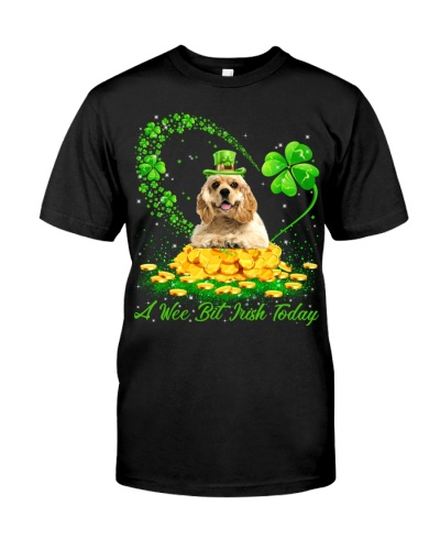 American Cocker Spaniel-A Wee Bit Irish Today