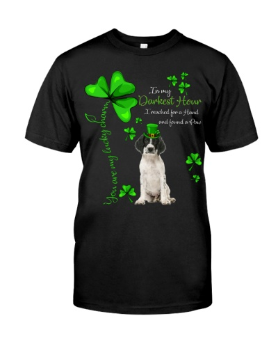 My Lucky Charm is English Springer Spaniel
