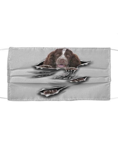 English Springer Spaniel-Scratch1-FM