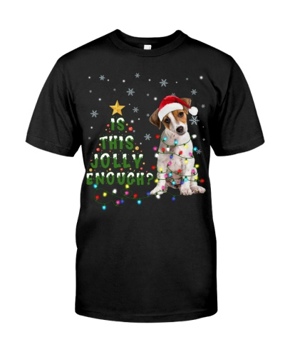 Jack Russell Terrier-Jolly