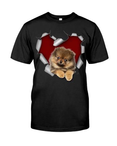 Pomeranian Torn Heart