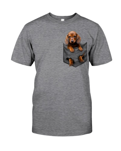 Dachshund - Pocket - DHG