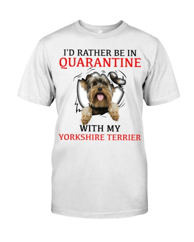 Quarantine With My Yorkshire Terrier