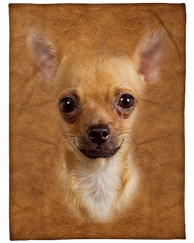 Chihuahua Face 3D