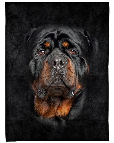 Rottweiler Face 3D