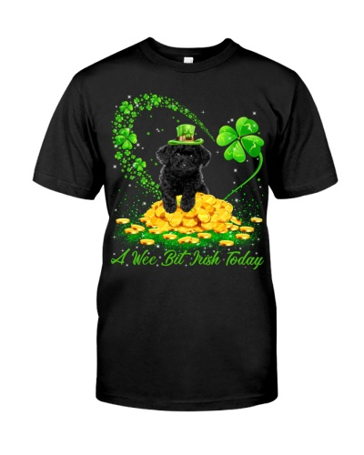 Black Toy Poodle-A Wee Bit Irish Today