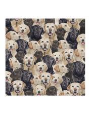 Labrador Retriever FM Face Cloth face mask aos-face-mask-coverlet-lifestyle-front-02