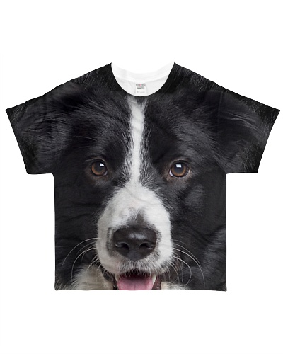 Border Collie1-Face and Hair