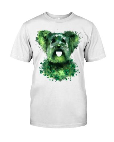 Yorkshire Terrier Lucky Shamrock