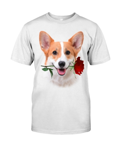 Welsh Corgi With Rose Branch