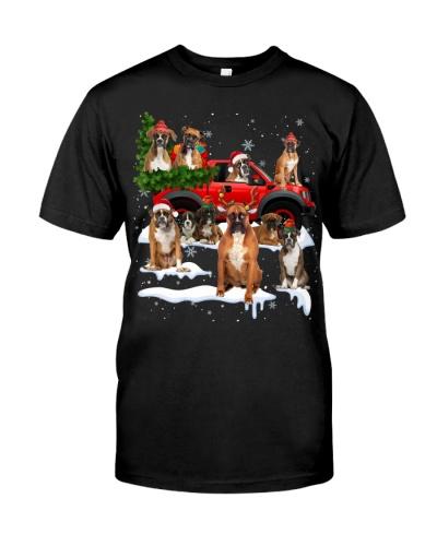 Boxer-Christmas Car