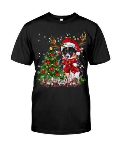 Border Collie-Reindeer-Christmas