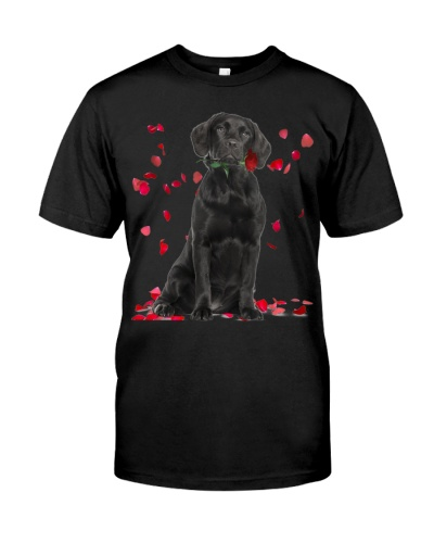 Black Labrador Raining Red Roses