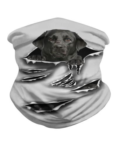 Black Labrador -Scratch-BDN