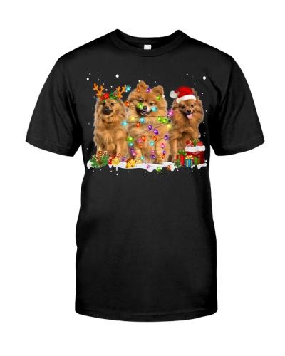 Pomeranian-Snow-Christmas