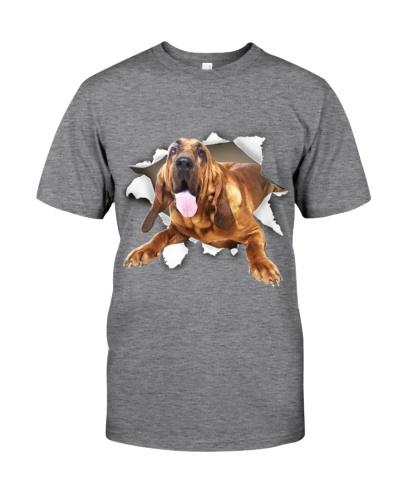 Bloodhound - Torn Paper