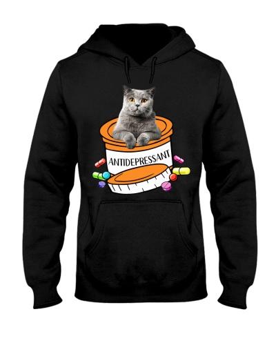 British Shorthair Cat Antidepressant