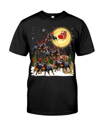 Rottweiler-Santa Claus