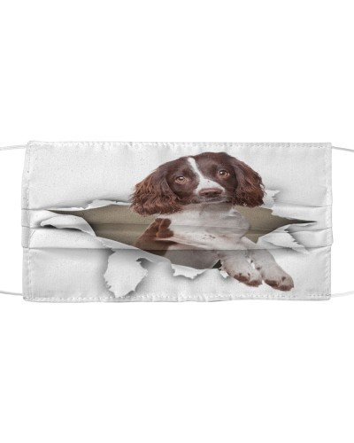 English Springer Spaniel Torn Paper Face