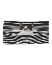 Boston Terrier Stripes Fm Cloth face mask front