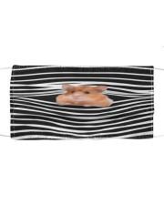 Hamster Stripes FM Cloth face mask front