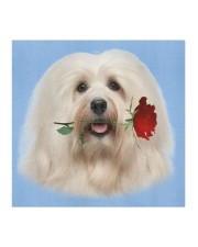 Havanese Rose FM Cloth face mask aos-face-mask-coverlet-lifestyle-front-02