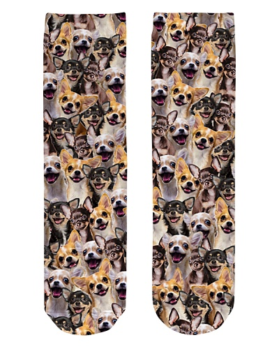 Chihuahua-Faces