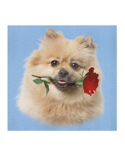 Keeshond Rose FM Cloth face mask aos-face-mask-coverlet-lifestyle-front-02