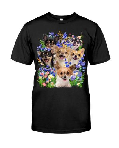 Chihuahua Purple Flowering Shrubs