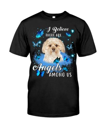 Morkie-Angels Among Us
