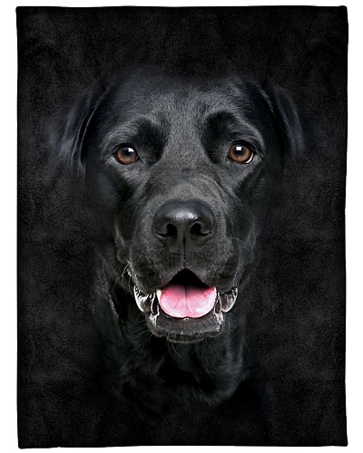 Black Labrador Face 3D