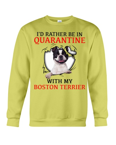 Quarantine With My Boston Terrier