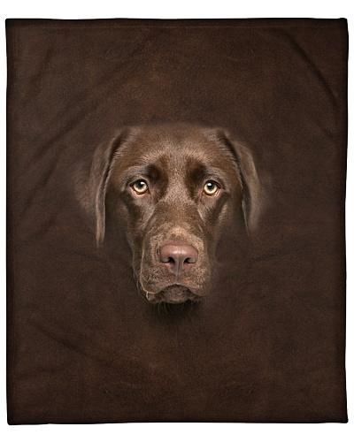 Chocolate Labrador Face 3D