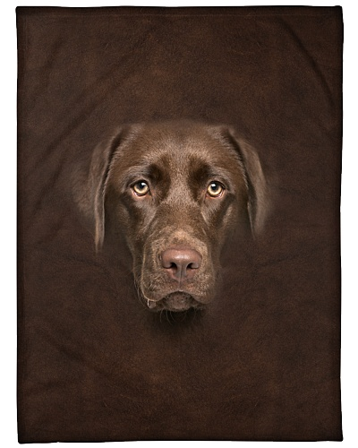 Chocolate Labrador Face 3D