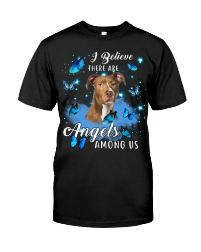 American Pit Bull Terrier-Angels Among Us