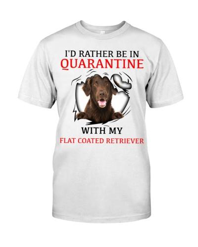 Quarantine With My Flat-Coated Retriever