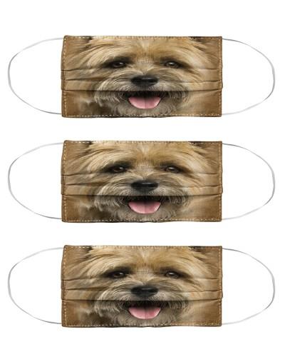 Cairn Terrier Face