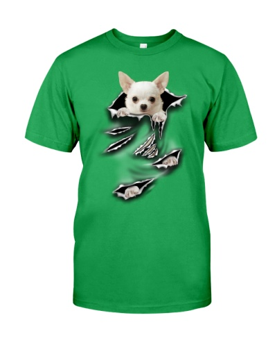 Chihuahua-Scratch