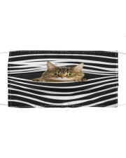 Tabby Cat Stripes FM Cloth face mask front