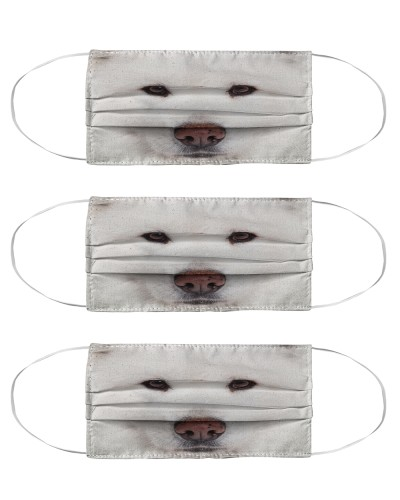 Samoyed Face