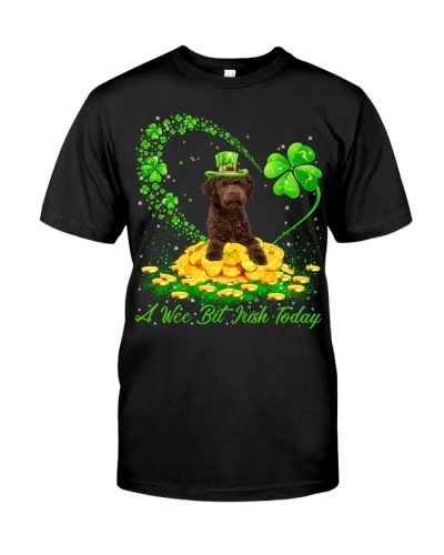 Australian Labradoodle-02-A Wee Bit Irish Today