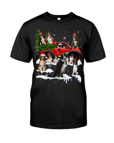Border Collie-Christmas Car