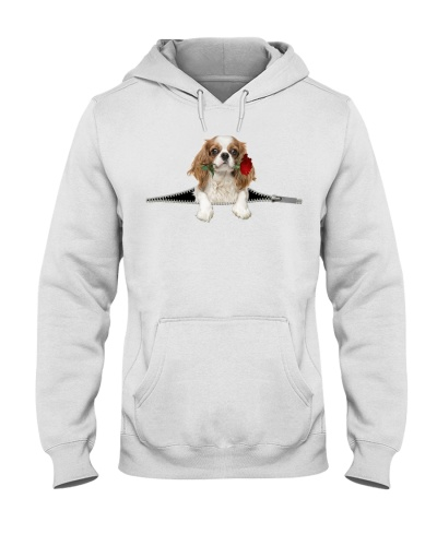 Cavalier King Charles Spaniel Rose Face