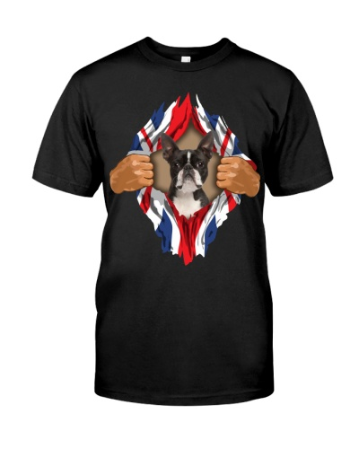 Boston Terrier-Torn-Union Jack