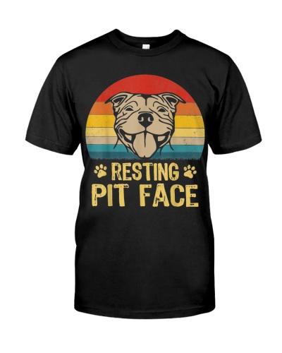 Pitbull Dog Resting Pit