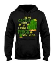Cinco De Mayo 2018 Shirt Funny Cactus Mexican Gift Hooded Sweatshirt thumbnail