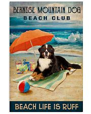 Bernese Mountain Dog 16x24 Poster front