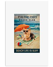 Yorkshire Terrier 16x24 Poster front