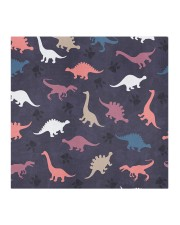 Dinosaur FM 11 HH Cloth face mask aos-face-mask-coverlet-lifestyle-front-02