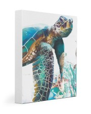 Turtle Art 2606 11x14 Gallery Wrapped Canvas Prints front